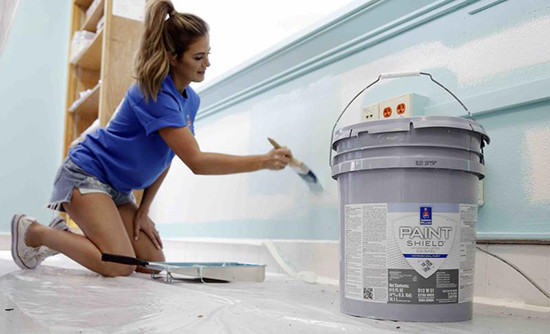 Sherwin_williams_national_paiting_w